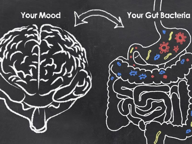 חיידקים במעיים והקשר ל ADD/ADHD